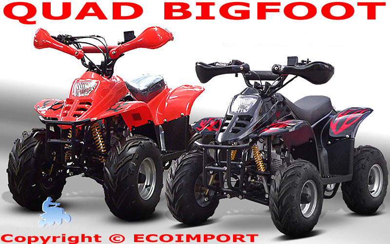 eco import magasin achat quad homologue vente scooter acheter motocross dirt bike buggy pas cher. Black Bedroom Furniture Sets. Home Design Ideas
