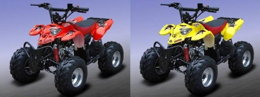 quad neo x quad pour enfant 110cc essence avec marche. Black Bedroom Furniture Sets. Home Design Ideas