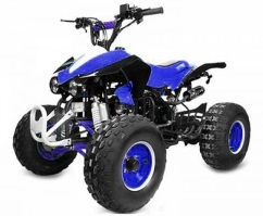 quad 125cc quad 125 cm3 ados pas cher quads 125cc kx raptor neox army mini hummer puma. Black Bedroom Furniture Sets. Home Design Ideas