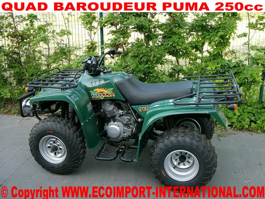 quad baroudeur puma homologue route pas cher quad 250cc look yamaha. Black Bedroom Furniture Sets. Home Design Ideas