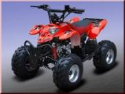 QUAD POLARIS REPLICA 110cc