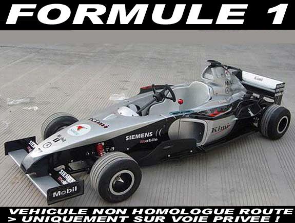 formule1 f1 karting pour enfant moteur 110cc kart pas cher. Black Bedroom Furniture Sets. Home Design Ideas