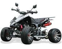 quad homologu route 200cc 250cc 300cc 350cc 400cc quad pas cher. Black Bedroom Furniture Sets. Home Design Ideas