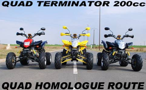quad terminator 200cc homologue route neuf pas cher. Black Bedroom Furniture Sets. Home Design Ideas
