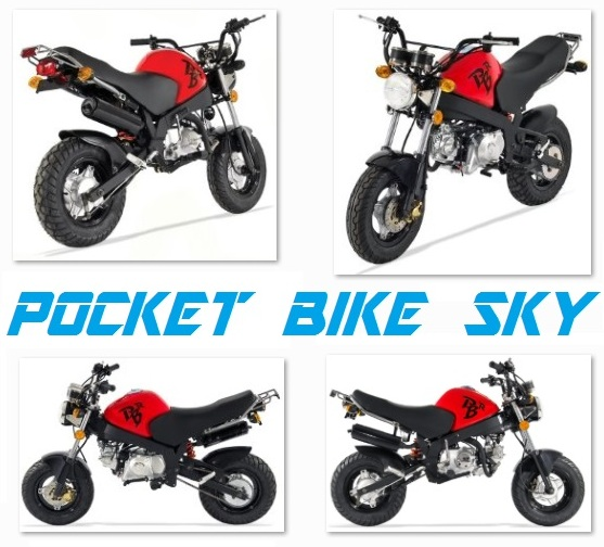 pocket bike sky