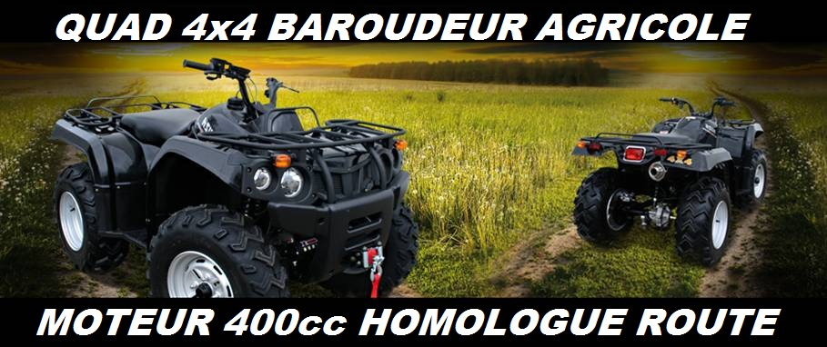quad 4x4 baroudeur 400cc agricole pas cher quad utilitaire neuf au prix occasion. Black Bedroom Furniture Sets. Home Design Ideas