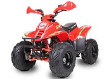 Quad bigfoot 125cc