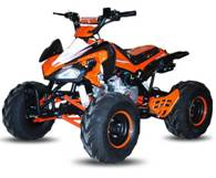 Quad Scorpion 110cc