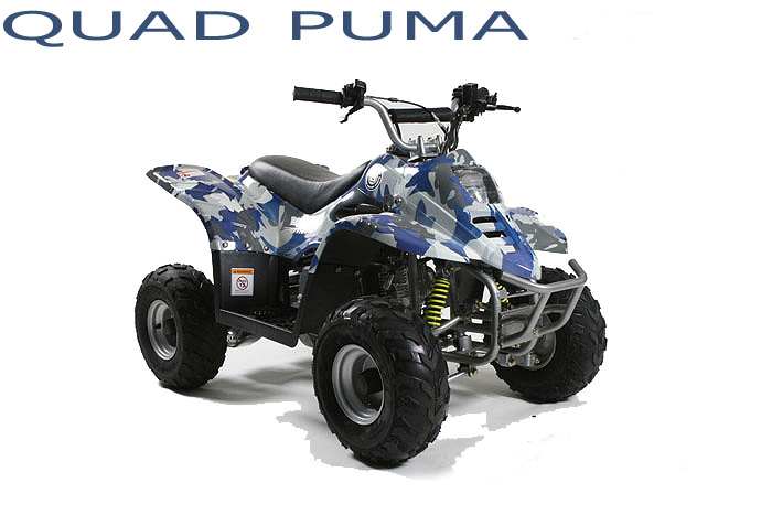 quad puma 110cc camouflage quad enfant mini atv pas. Black Bedroom Furniture Sets. Home Design Ideas