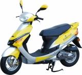 eco import magasin internet boutique achat vente de scooter motos cross pocket bike dirt bike. Black Bedroom Furniture Sets. Home Design Ideas