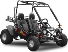 buggy 200cc neo motors homologue route pas cher