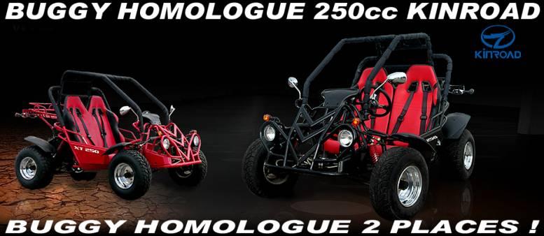 Buggy Homologue Route 2 Places 250cc Rider Kinroad     Pas