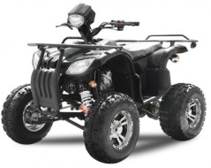 quad 250cc homologue route neo evo plus