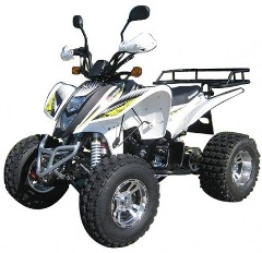 shineray terminator 250cc jantes alu homologue route 2 places pas cher