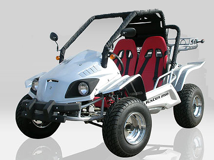 BUGGY 250cc HOMOLOGUE ROUTE