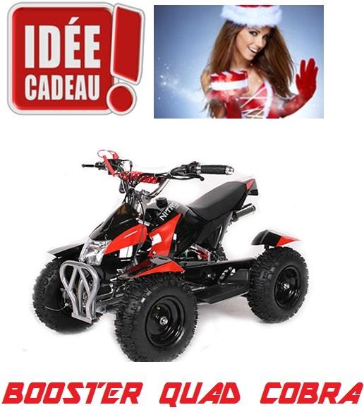 Importateur Pas Cher Quad Dirt Bike Pocket Moto Cross Buggy