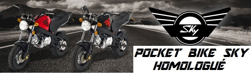 moto-pocket-bike-sky-homologue