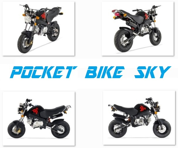 pocket-bike-sky-50cc
