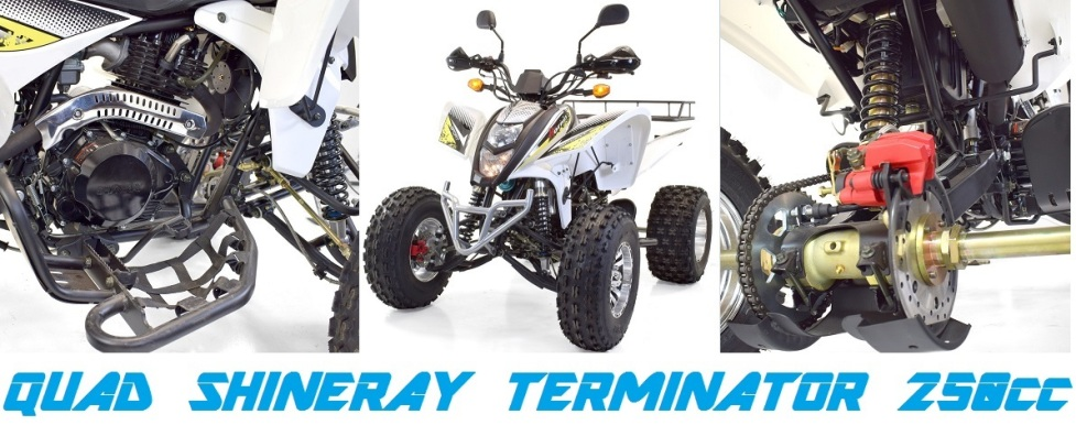 quad-shineray-terminator-250cc-homlogue-250-cm3
